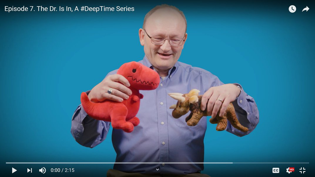 Person holding two stuffed dinosaur toys.