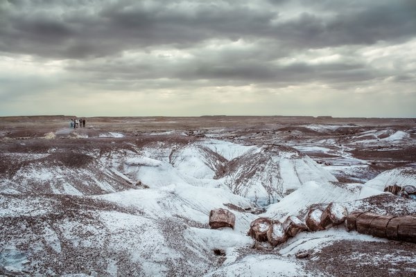 Fellow visitors at the distance, at Petrified Forest National Park thumbnail