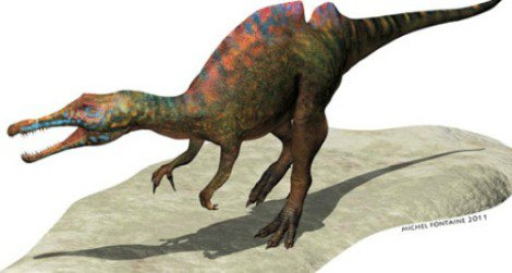 A restoration of Ichthyovenator by Michel Fontaine