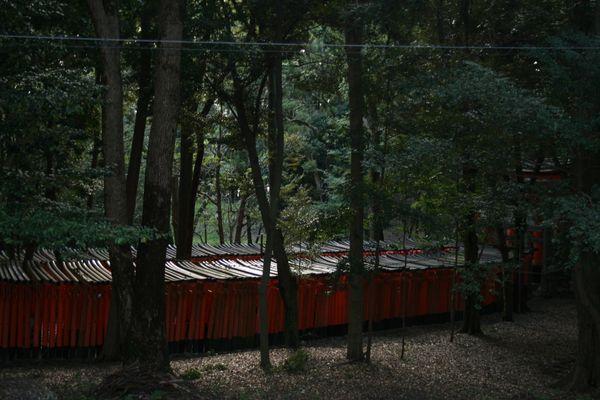 Fushimi Inari-Taisha in Kyoto thumbnail