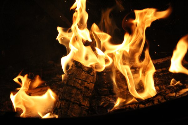 Up in Flames  thumbnail