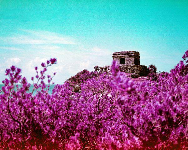 The Beauty amd Ruin of Kukulcán Temple thumbnail