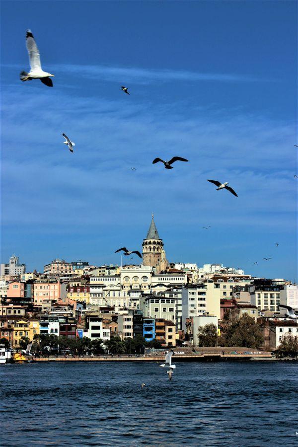 Galata Kulesi İstanbul Türkiye thumbnail