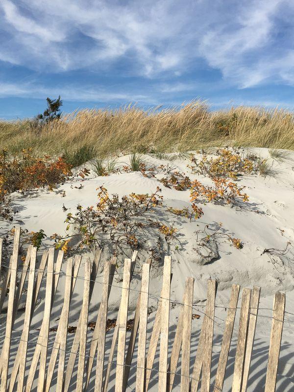 Fall at Gooseberry Beach-Newport, Rhode Island thumbnail