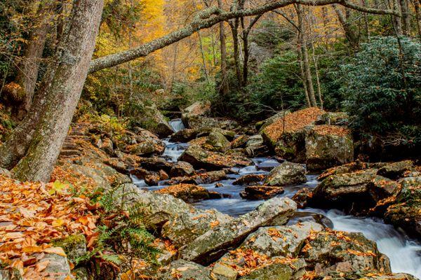 Cascading Creek thumbnail