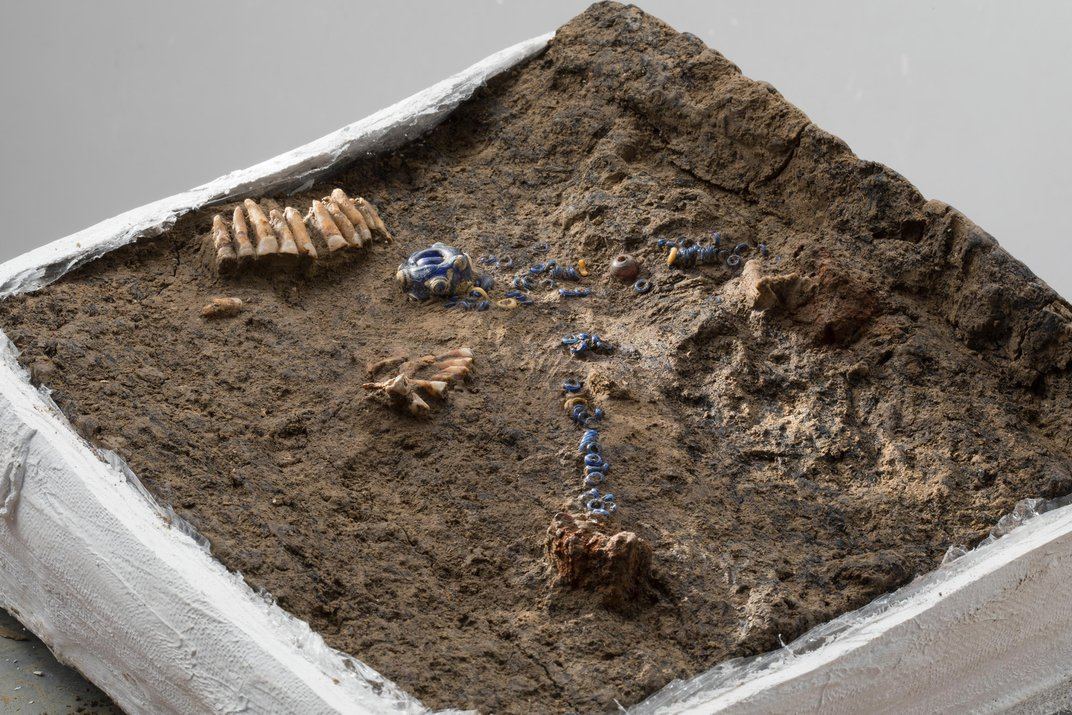 This Iron Age Celtic Woman Was Buried in a Hollowed-Out Tree Trunk