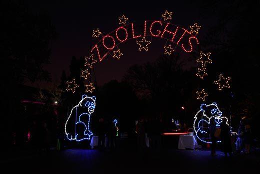 zoo_lights_2.jpg