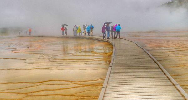 Boardwalk on a Rainy Day thumbnail