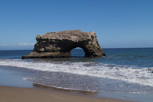 Natural Bridge State Beach Santa Cruz, California thumbnail