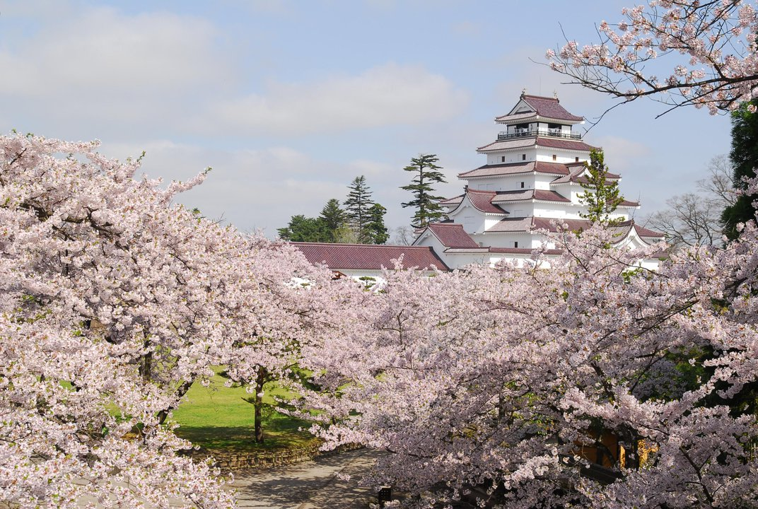 Discover a Hidden Side of Japan: Venturing Out of Tokyo to Fukushima