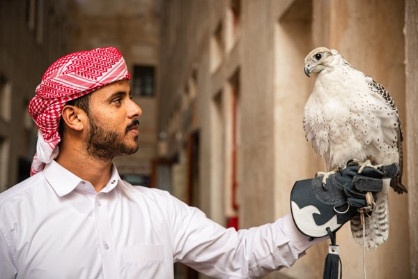 The falcon trainer at the Souk in Doha, Qatar thumbnail