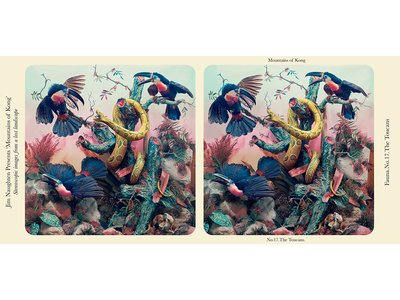 Jim Naughten's 2017 stereograph, The Toucans, mimics the look of a Victorian image.