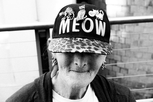 The Cat's Meow thumbnail