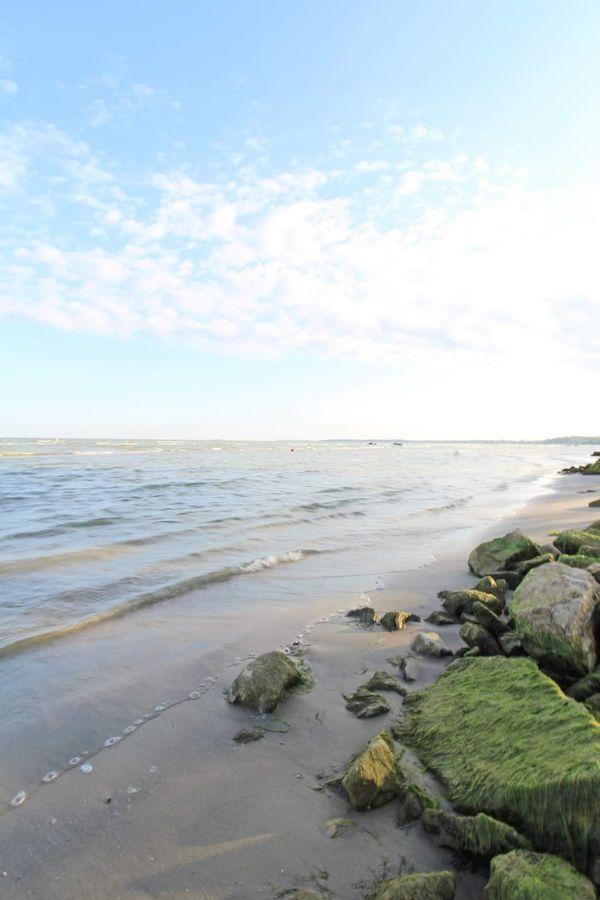 Lake Erie Shore thumbnail