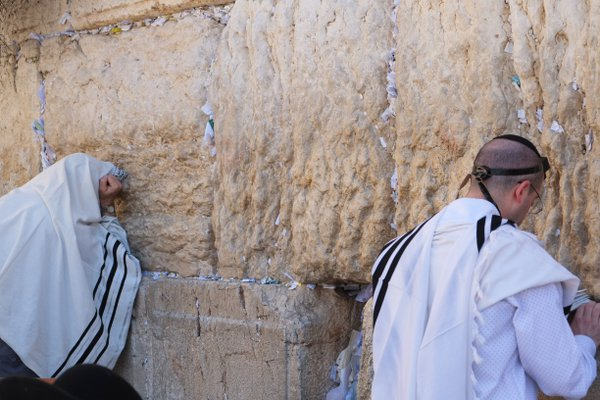 Praying at Western Wall thumbnail