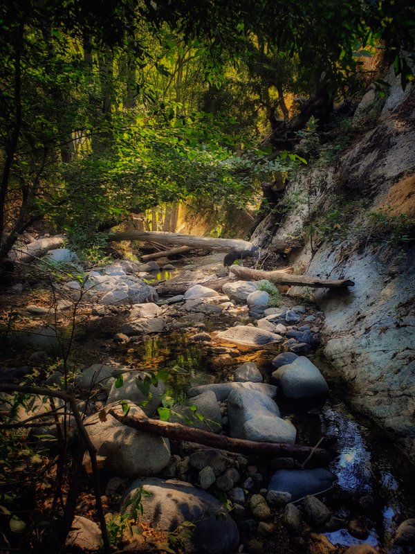 Angeles Forest River Bed thumbnail