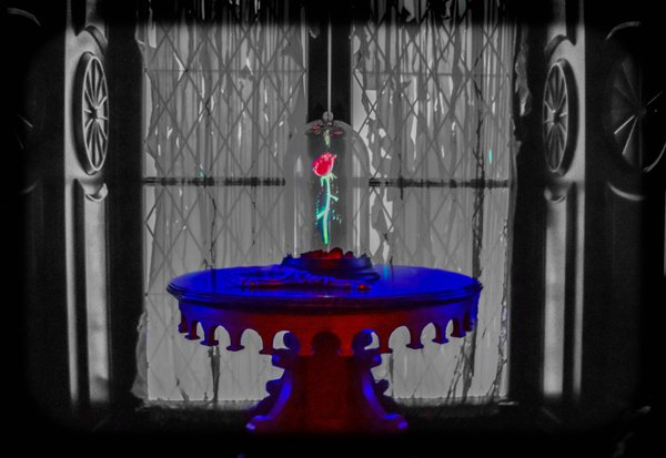 Rose At Be Our Guest in the Magic Kingdom thumbnail