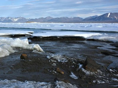 The yet-to-be-named island was likely formed when ice bulldozed seabed mud up above the water's surface during a storm.