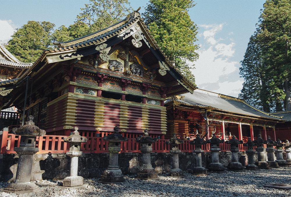 The Way of the Shogun