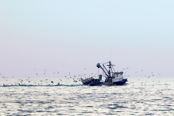Fishing Boat heading out of Newport Bay, Newport Beach, CA thumbnail