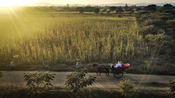 Enjoyable sunset in Bagan thumbnail