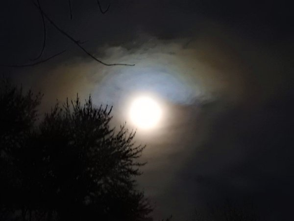Gibbous Waxing Full Moon thumbnail