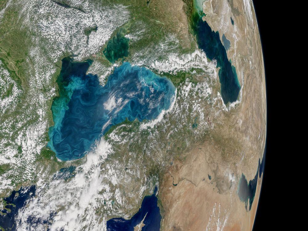 Black Sea Swirl