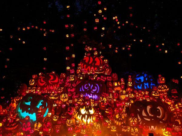 Pumpkinville of Louisville thumbnail