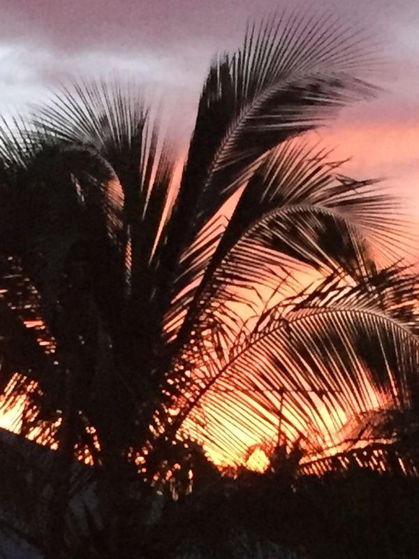 Pink sky sunset thumbnail