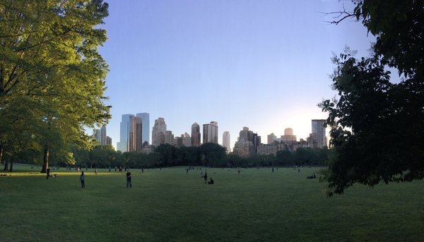 Evening skyline of Manhattan seen from Sheep Meadow thumbnail