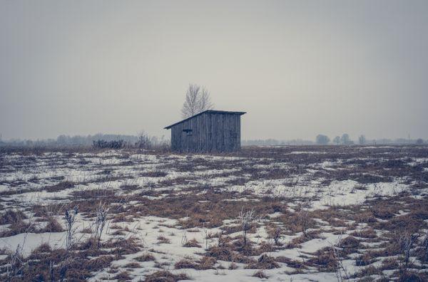 Snowy Field thumbnail