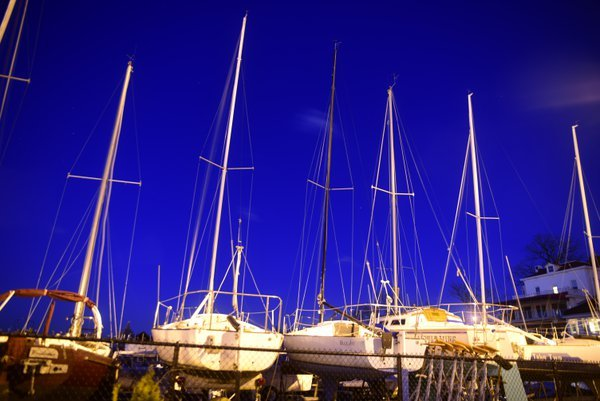Sail boats docked in the marina thumbnail