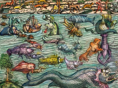 A 16th-century illustration of imaginary sea monsters from Cosmographia by Sebastian Mustern, based on creatures from Carta Marina by Olaus Magnus.