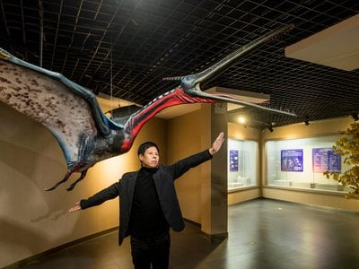 Liu Cun Yu, the director of the Beipiao Pterosaur Museum, poses in front of a full-scale model of a Moganopterus zhuiana, a species named after his wife.