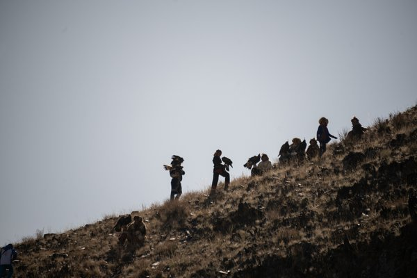 Eagle Helpers on the Hill thumbnail