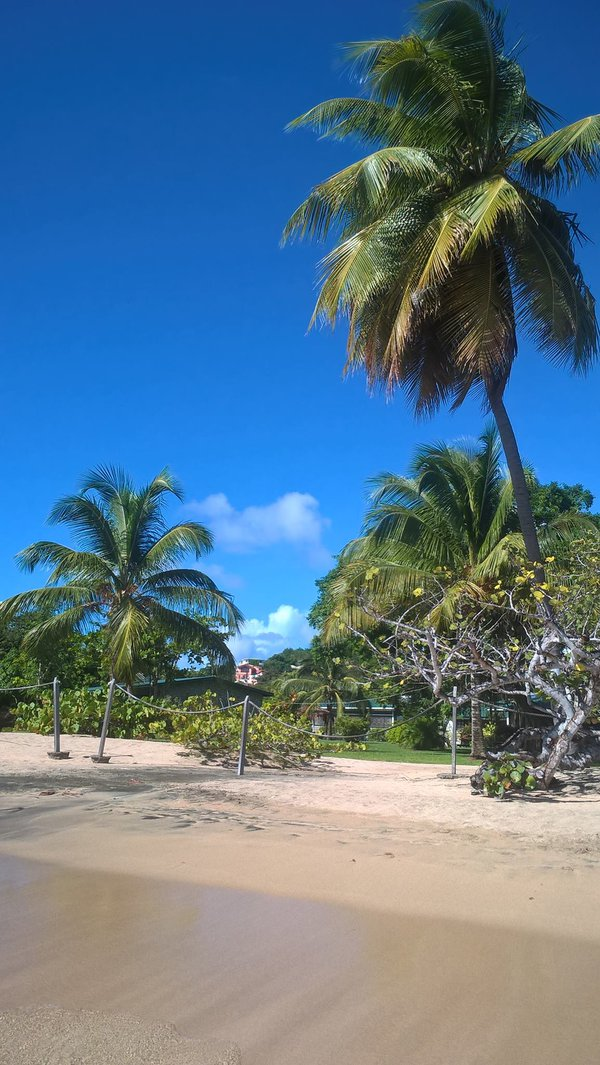 Lance Aux Epines Beach, Grenada, West Indies thumbnail