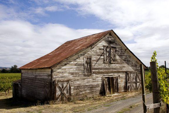 Abandoned Barn on Sonoma Vineyard thumbnail