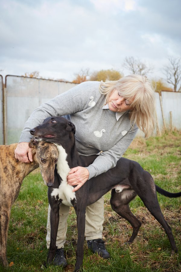 Norah with the greyhounds in the paddock thumbnail