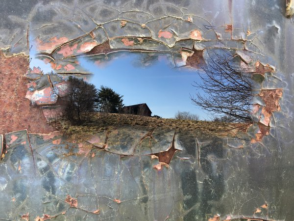 Reflection in the ice thumbnail