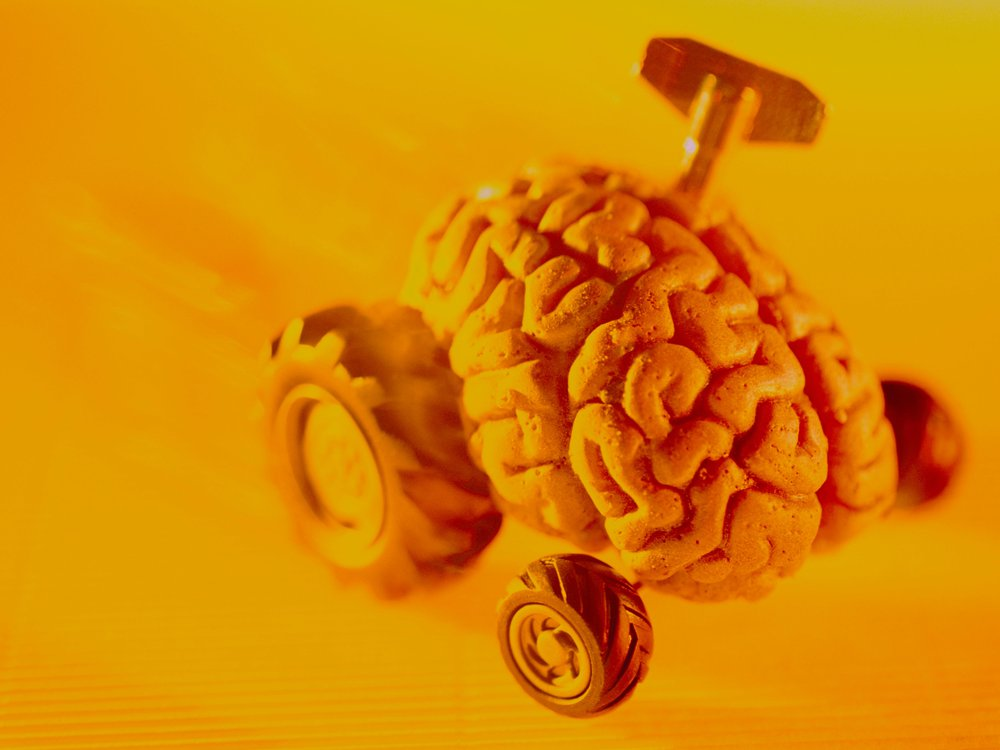 fast brain