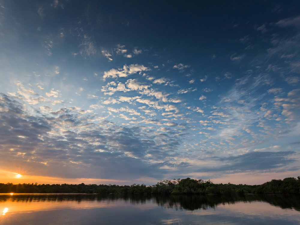 Rio Negro.jpg