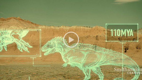Preview thumbnail for The Shift in Prehistoric Apex Predators