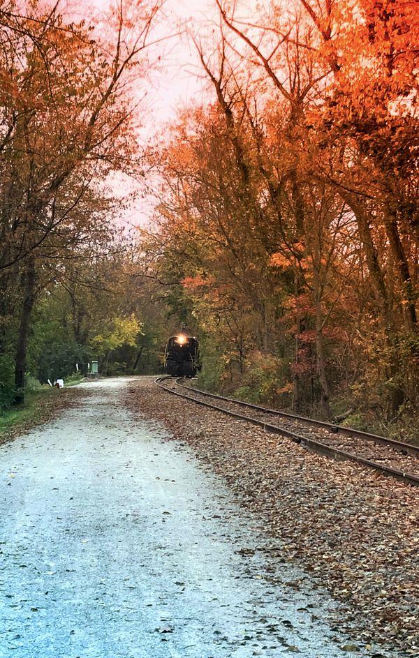 Train on rail trail tracks in the Fall thumbnail