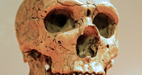 Neanderthals' successful