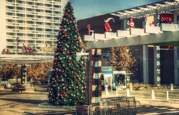 Albuquerque Christmas thumbnail