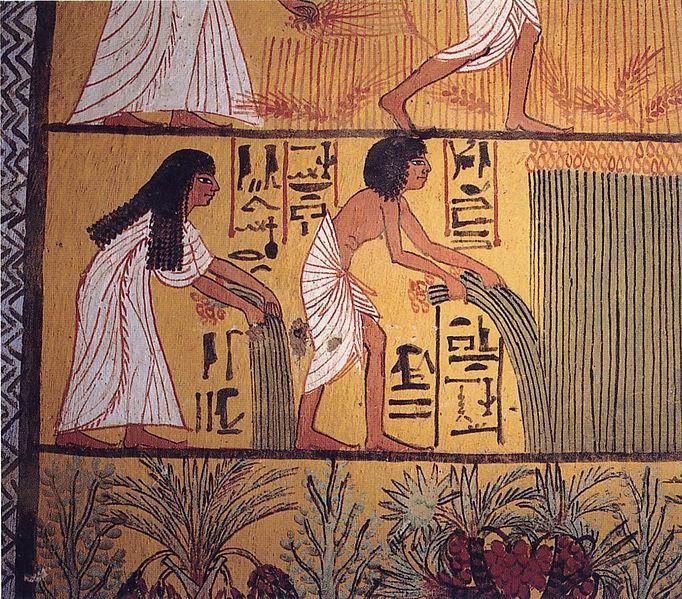 Egyptian Harvest