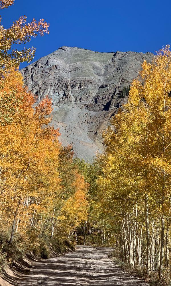 Fall color near Alta Vista, Colorado thumbnail