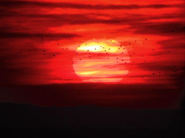 Hazy sunrise thumbnail