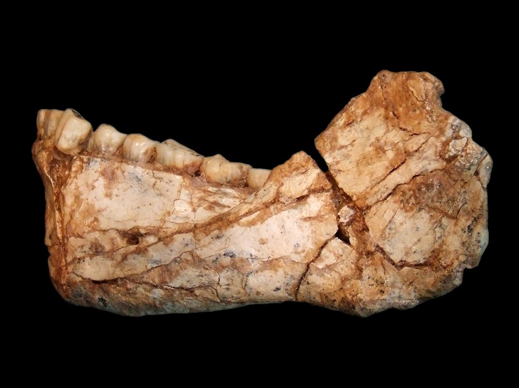 The Science Behind the Discovery of the Oldest Homo Sapien