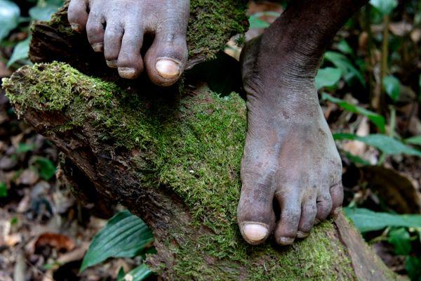 pygmy hunter thumbnail